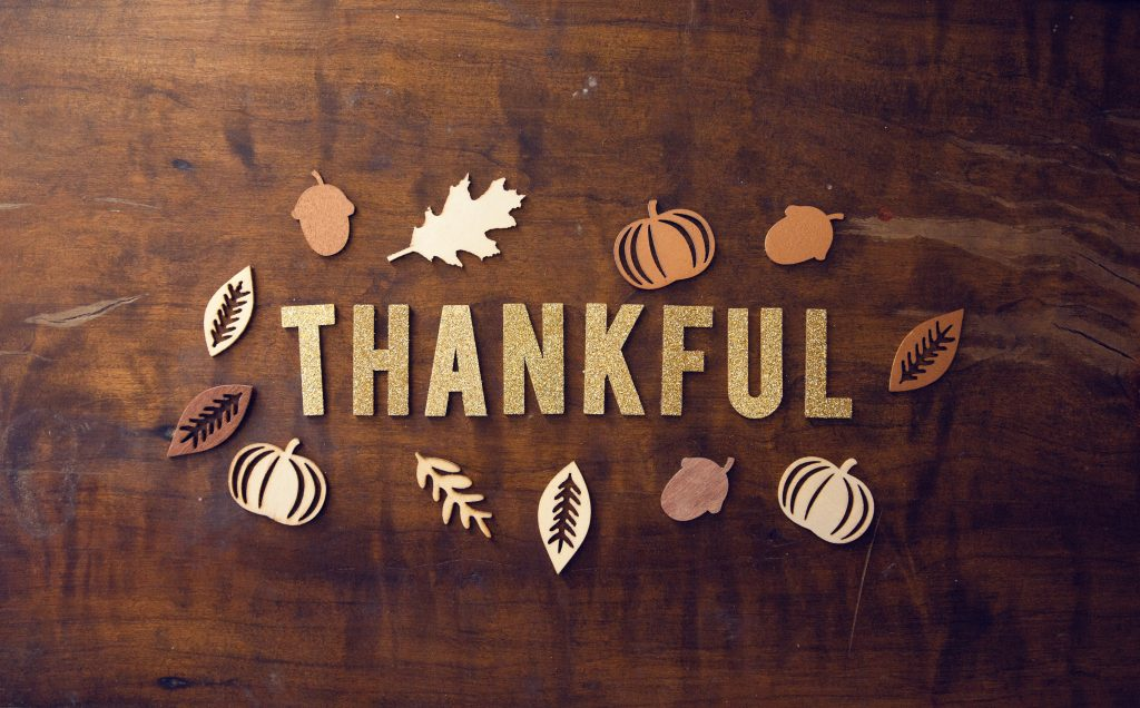 5 Tips To Save Money This Thanksgiving | Avibra